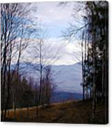 The Vermont Woods - Stowe Canvas Print