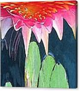 The Water Lily Unleashed Canvas Print