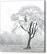 The Winter's Embrace Canvas Print