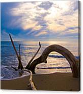 The Wooden Arch Canvas Print