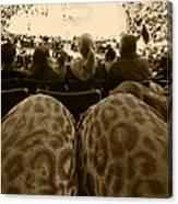 The World Thru Leopard Printed Pants Canvas Print