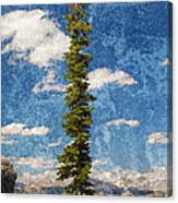 Thin Air Canvas Print