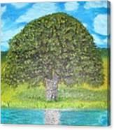 Thinking Tree Canvas Print