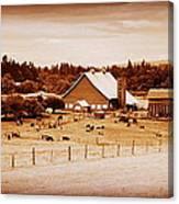 This Old Farm IIII Canvas Print