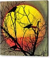 Three Blackbirds Canvas Print