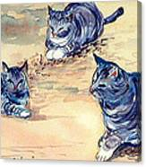 Three Cats In Dry Grass Canvas Print