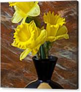Three Daffodils Canvas Print