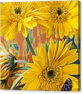 Three Daisy's And Butterfly Canvas Print