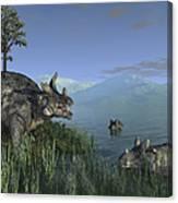 Three Estemmenosuchus Mirabilis Face Canvas Print