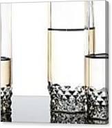 Three Luxury Glasses Canvas Print
