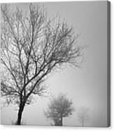 Three Silhouettes In The Rain Canvas Print