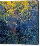 Three Thin Autumnal Trees In Front Of Canvas Print