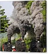 Three Train Race Canvas Print