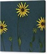 Three Yellow Flowers Canvas Print