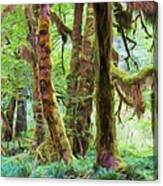 Through Moss Covered Trees Canvas Print