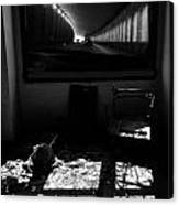 Through The Dark Canvas Print