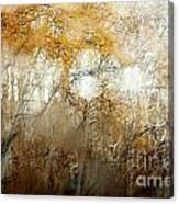 Through The Fog Canvas Print