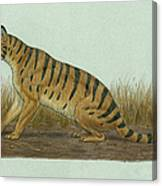 Thylacosmilus Atrox, A Genus Canvas Print