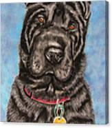 Tia Shar Pei Dog Painting Canvas Print