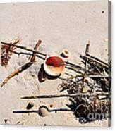 Tidal Treasures Canvas Print