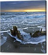 Tides At Driftwood Beach Canvas Print