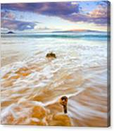 Tied To The Sea Canvas Print