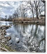 Tifft Nature Preserve Canvas Print
