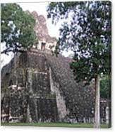 Tikal And Its Pyramids Canvas Print