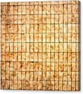 Tiled Wall Canvas Print