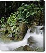 Time Exposure Of A Little Brook Flowing Canvas Print