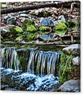 Tiny Waterfalls Canvas Print