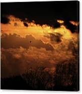 Tn Sunset Nov-11 Canvas Print