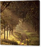 To The Shire Canvas Print