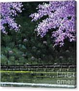 Togetsukyo Bridege In Cherrybrossom Canvas Print