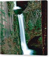 Toketee Falls Canvas Print