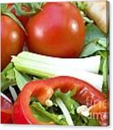 Tomato Salad Close Up Canvas Print