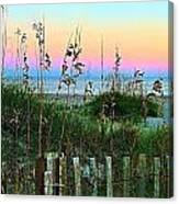 Topsail Island Dunes And Sand Fence Canvas Print