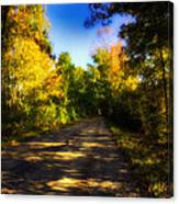 Townline Road Canvas Print