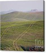 Tracks On The Field Canvas Print
