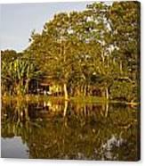 Traditional Amazon Village Canvas Print