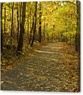 Trail Scene Autumn Abstract 1 Canvas Print