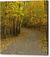Trail Scene Autumn Abstract 3 Canvas Print