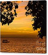 Tranquility Beyond The Trees Canvas Print