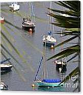 Tranquillity Two Canvas Print