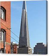 Transamerica Pyramid Tower In San Francisco . 7d7376 Canvas Print