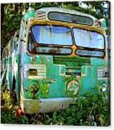 Transit Bus Canvas Print