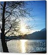 Tree And Lake Canvas Print
