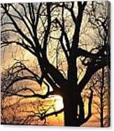 Tree Art Canvas Print