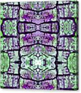 Tree Epidermis Canvas Print