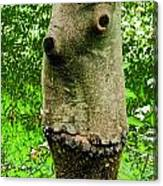Tree Face Canvas Print